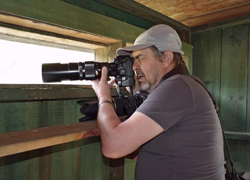Sortie à la réserve ornithologique du Teich - 24 août 2018 - Page 2 29374088737_1d0e31c9aa_b