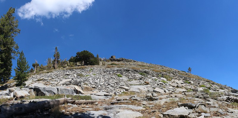 The Phipps Peak summit is directly above us on the Tahoe-Yosemite Trail but we didn't stop to climb it