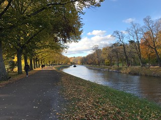 Walkway by canal in autumn