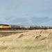 56113 Colas Rail Freight_9190014