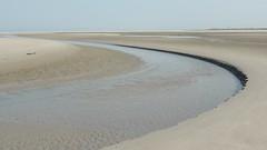 At the beach, Westerstrand Schiermonnikoog
