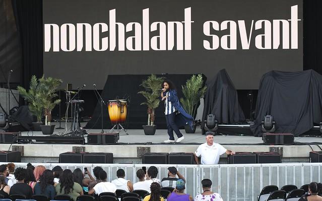 Nonchalant Savant (2)