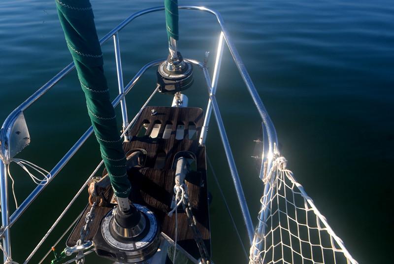 SVSN Cetacea One