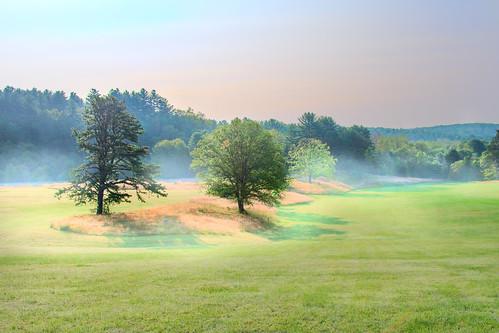 chancyrendezvous davelawler blurgasm quabbin reservoir field landscape trees fog sunrise morning summer mist massachusetts