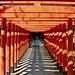 Inari shrine by Bakuman3188