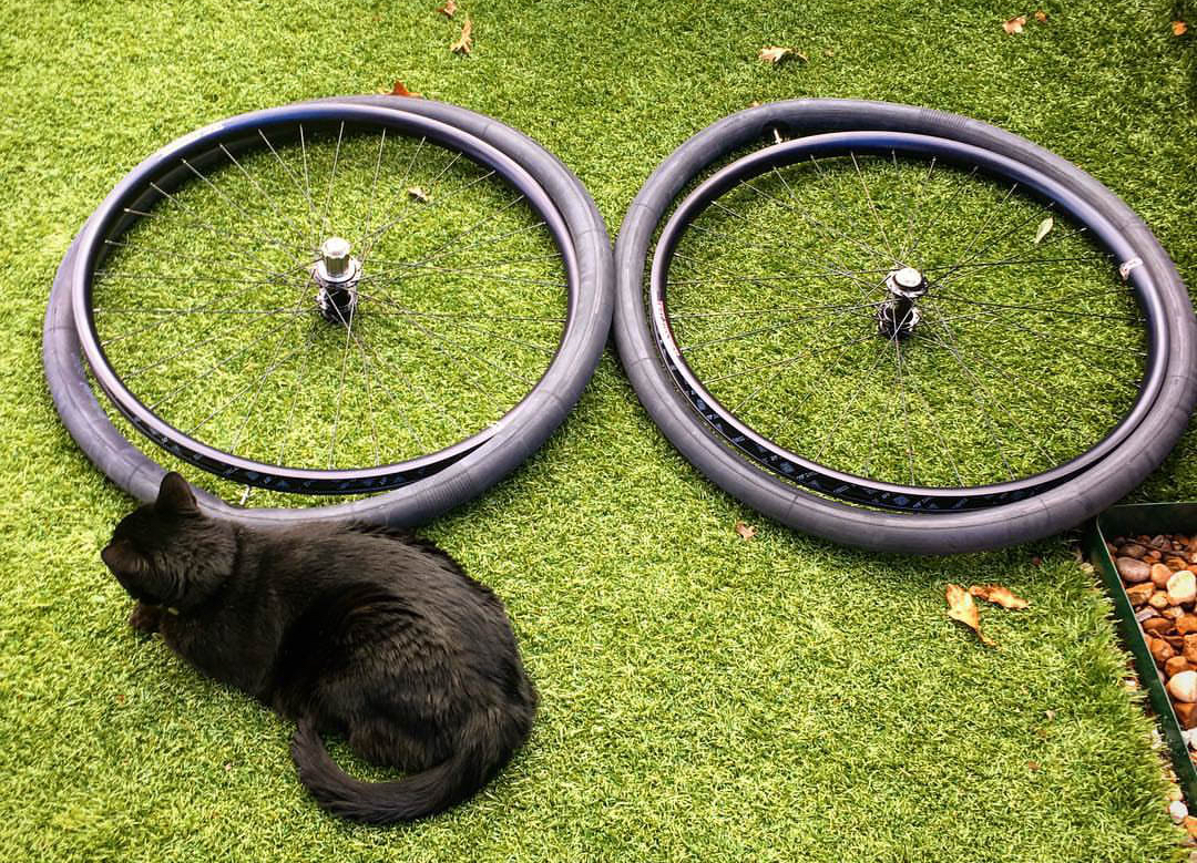 https://www.instagram.com/p/BeiOOR8F6Hd/ Bike wheels being repaired with Binky the cat looking on