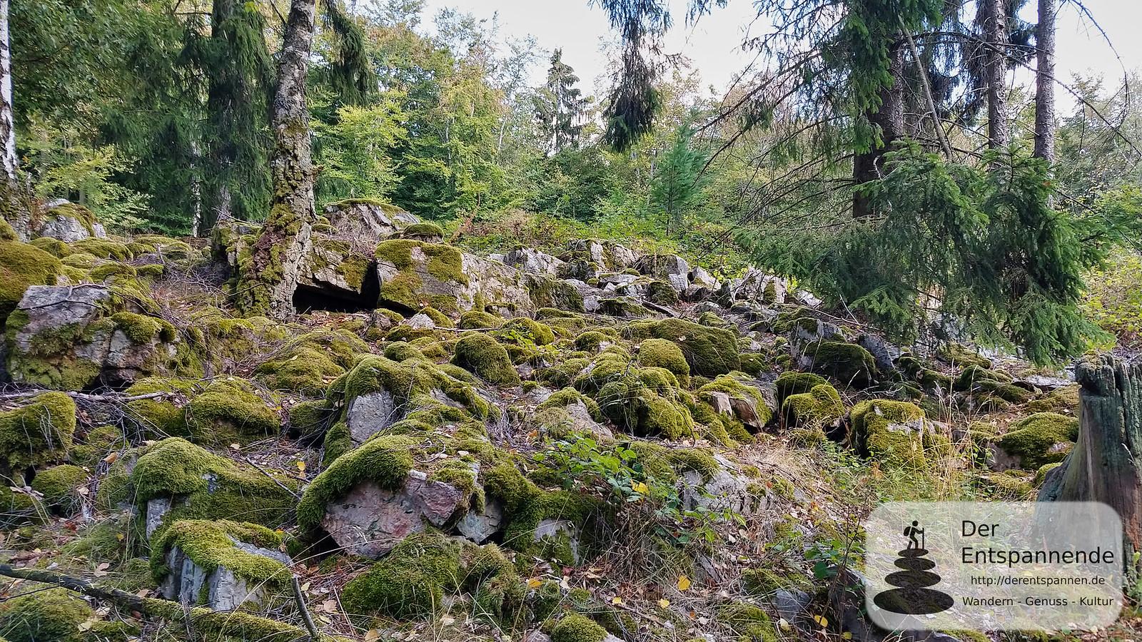 Schägleberg im Binger Wald