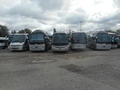 bus & coach lineups