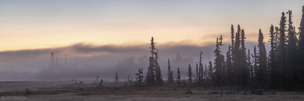 Morning fog - Alaska