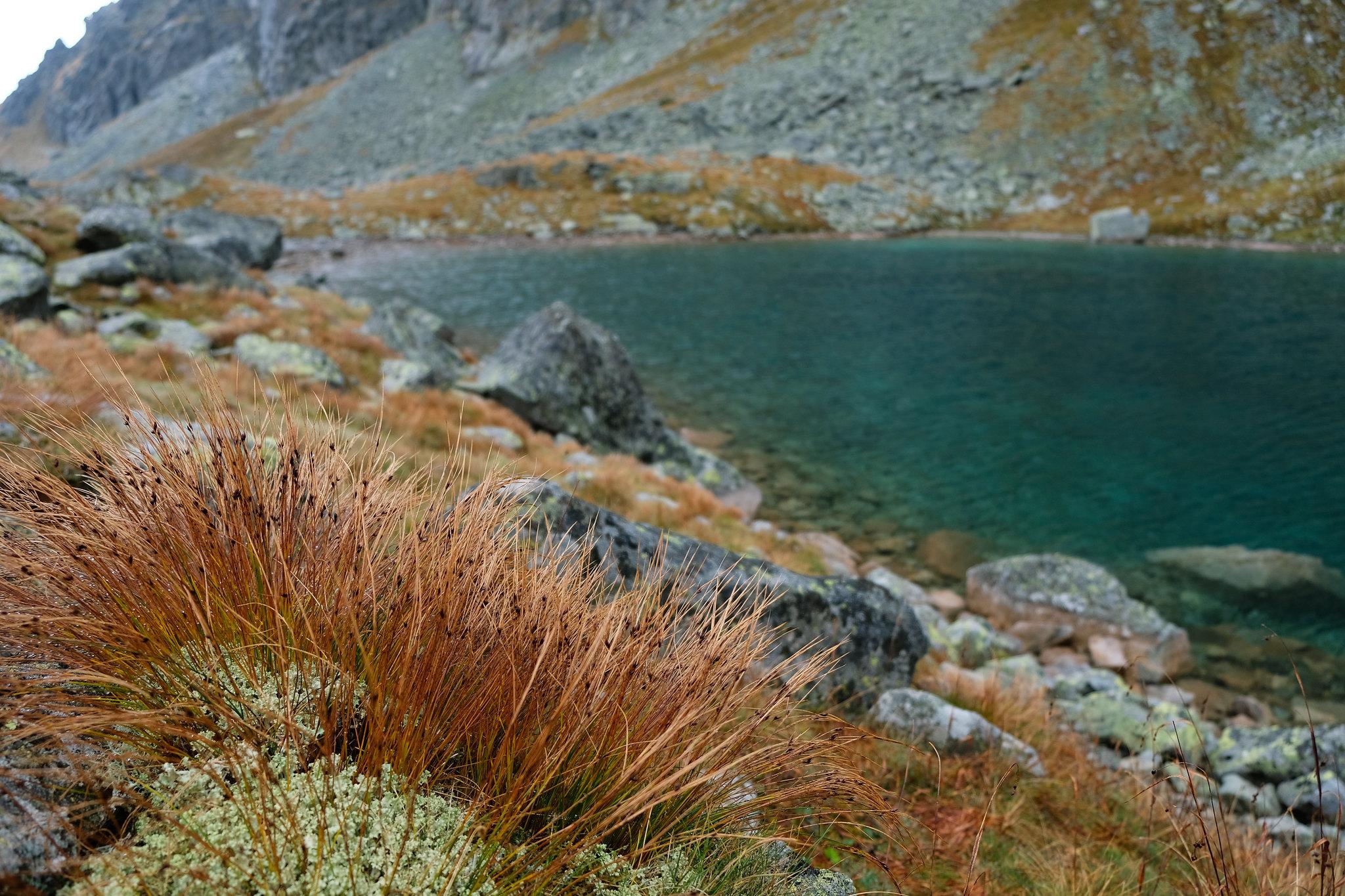 Dlhé pleso, High Tatras