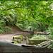 Badocks Wood