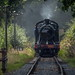 Severn Valley Summer, 2018 - 100 year old on Footplate Experience