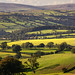 The Ribble Valley