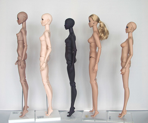 "Dolls 16"" bodies comparison 