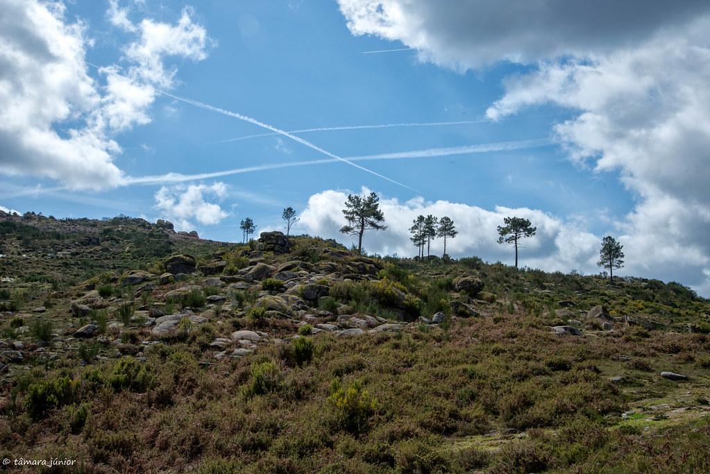 38.- 2018.- Trilho Interp. do Megalitismo de Britelo (132)
