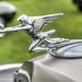 Packard 8