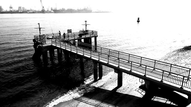 fishing at the punggol point pier
