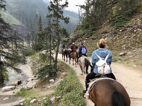 Horse ride at Lake Louise