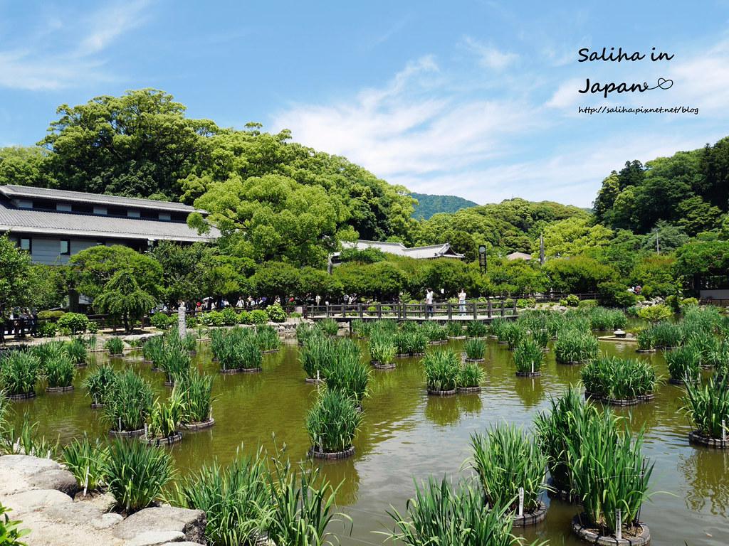 日本九州太宰府一日遊附近茶屋景點推薦 (30)