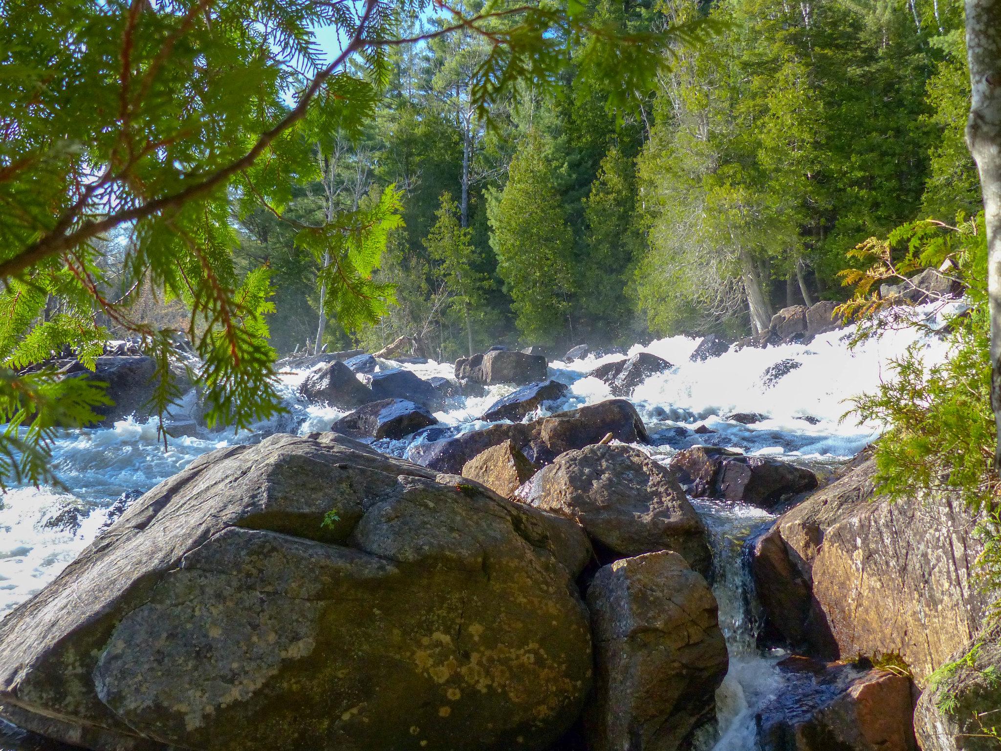 Oxtongue River - Ragged Falls Provincial Park (4)