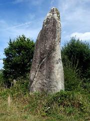 Le menhir dit « La Pierre Longue » près de Pluherlin - Morbihan - Août 2018 - 06