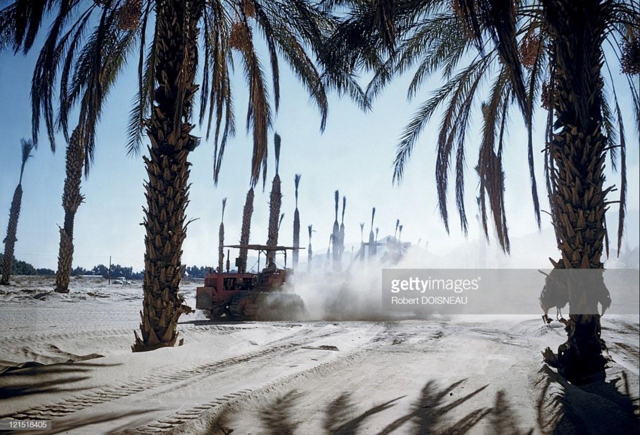 1960. Палм-Спрингс. Механизмы в песке