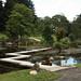 CJG1-17 Zigzag  Bridge to Pond Island, Cowden Japanese Gardens
