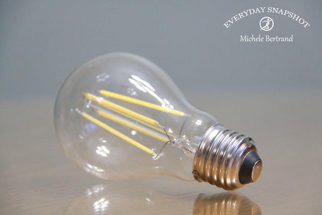Bulb 08