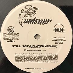 BIG PUNISHER:STILL NOT A PLAYER(LABEL SIDE-B)