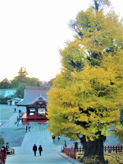 tsurugaoka004