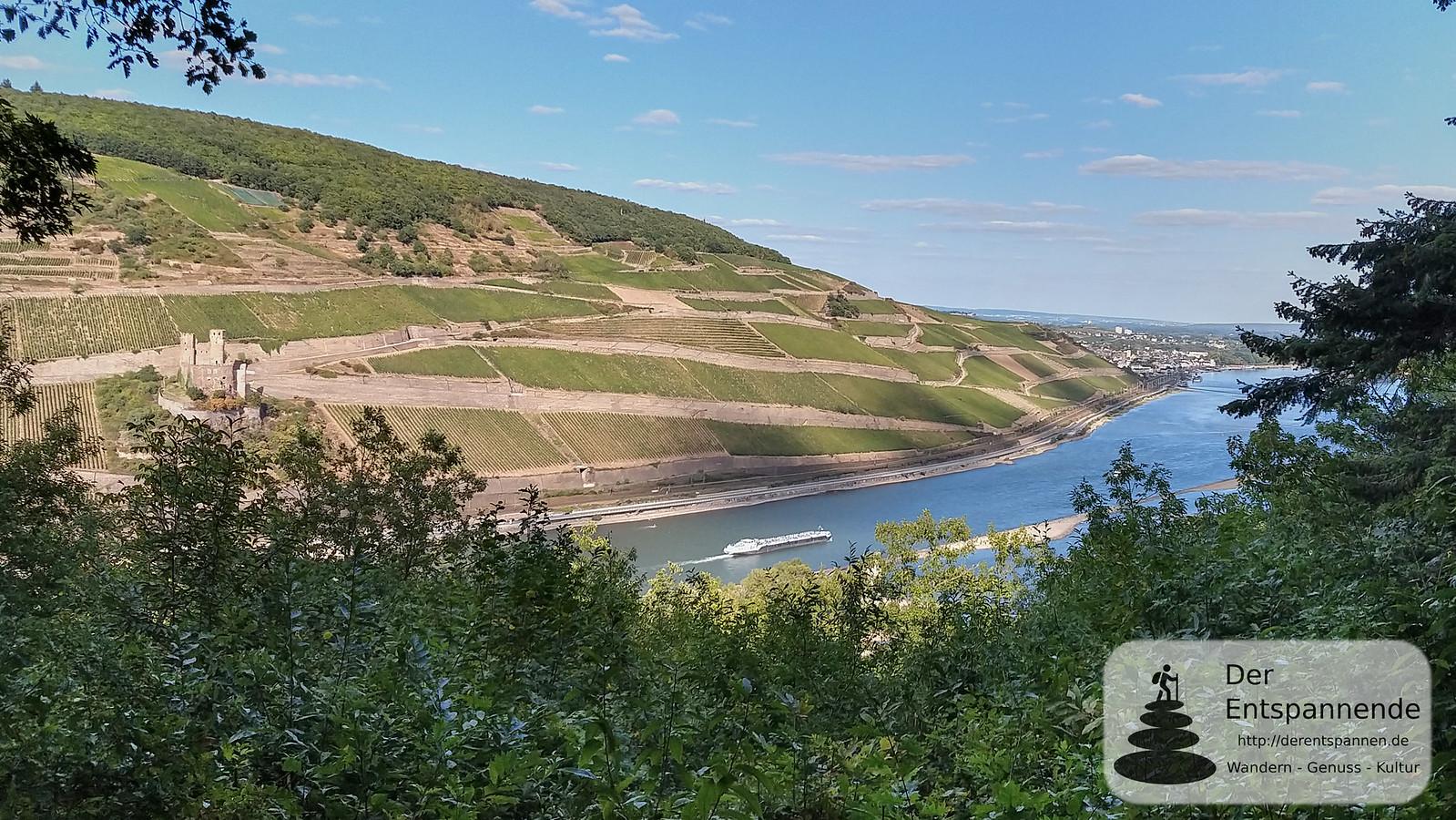 Am Prinzenkopf: Blick auf Rhein und Burg Ehrenfels