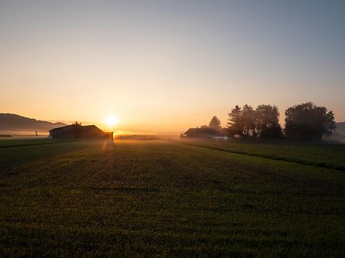 Sonnenaufgang im Wauwilermoos