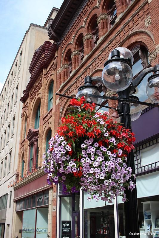 Ottawa Sparks Street 3