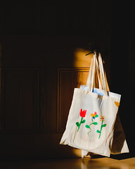 Bag and late afternoon, early autumn light - September 2018