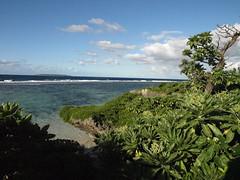 Tonga | 2013.06.14 | P6147663