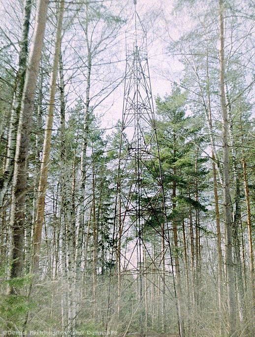 Вышка в лесу между Фрязино и РТС (Щёлково)