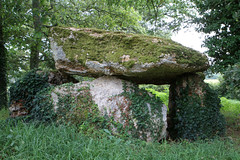 Le dolmen de Chiroux