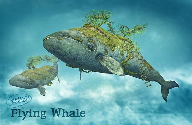 HPMD* Flying Whale