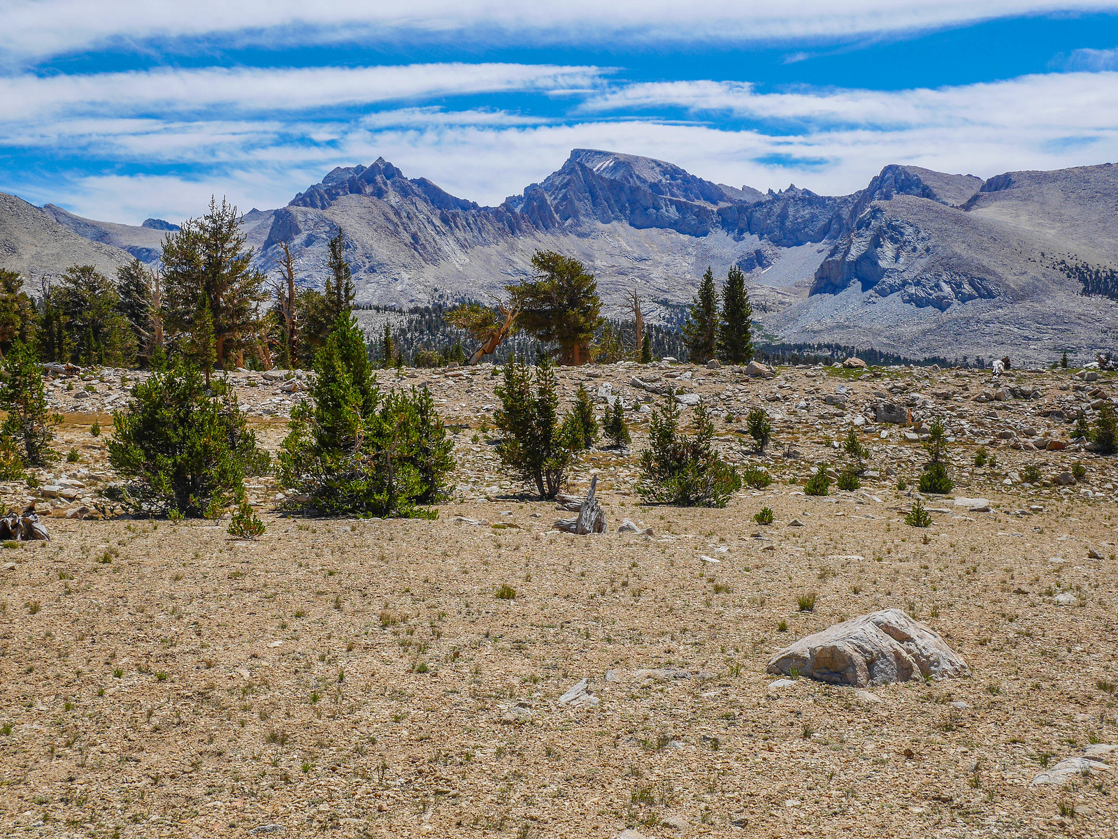 Whitney from the JMT on Bighorn Plateau