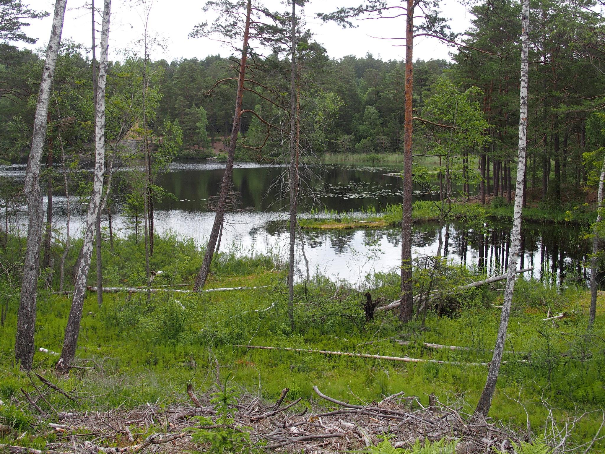 SÖ E1 Sandasjön