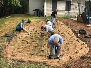 Forestbrooke Swim Club 2018 Rain Garden Planting