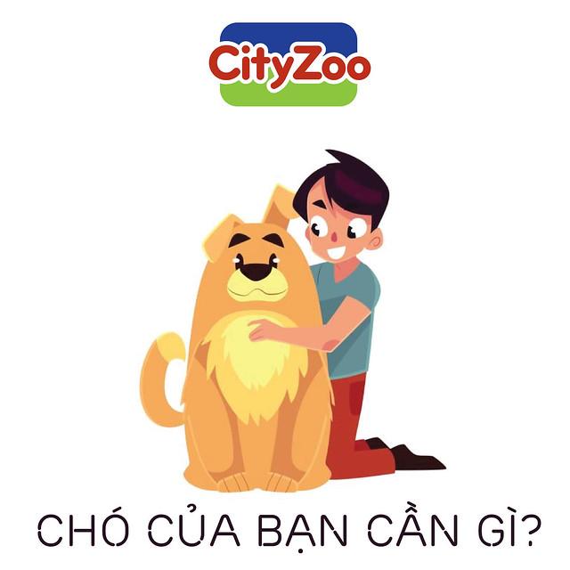 cho-con-can-gi