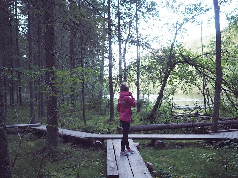 vuorilampi lenkkipolku pitkospuut kuopio suomi luonto
