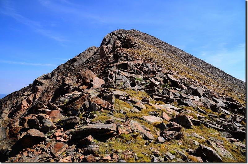 Terrain up to Mount Wilcox