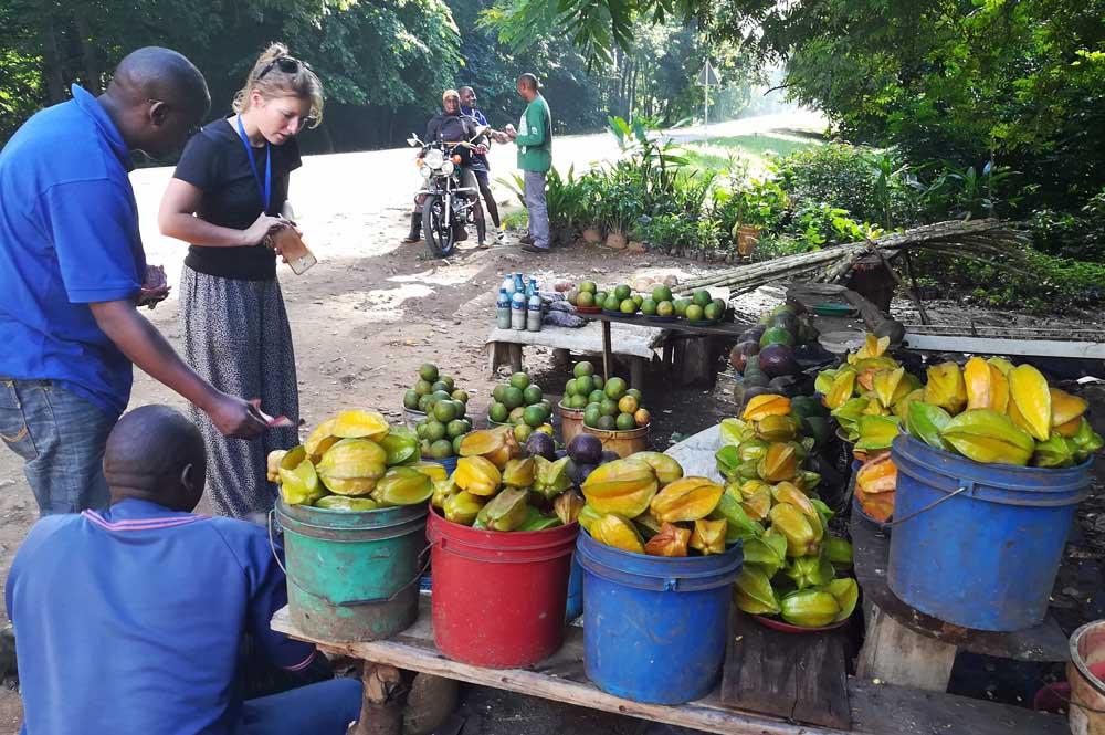 avocado-stand-tanzania