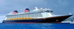 Cruises and Cruise Ships