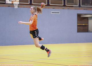 Handball Frisia