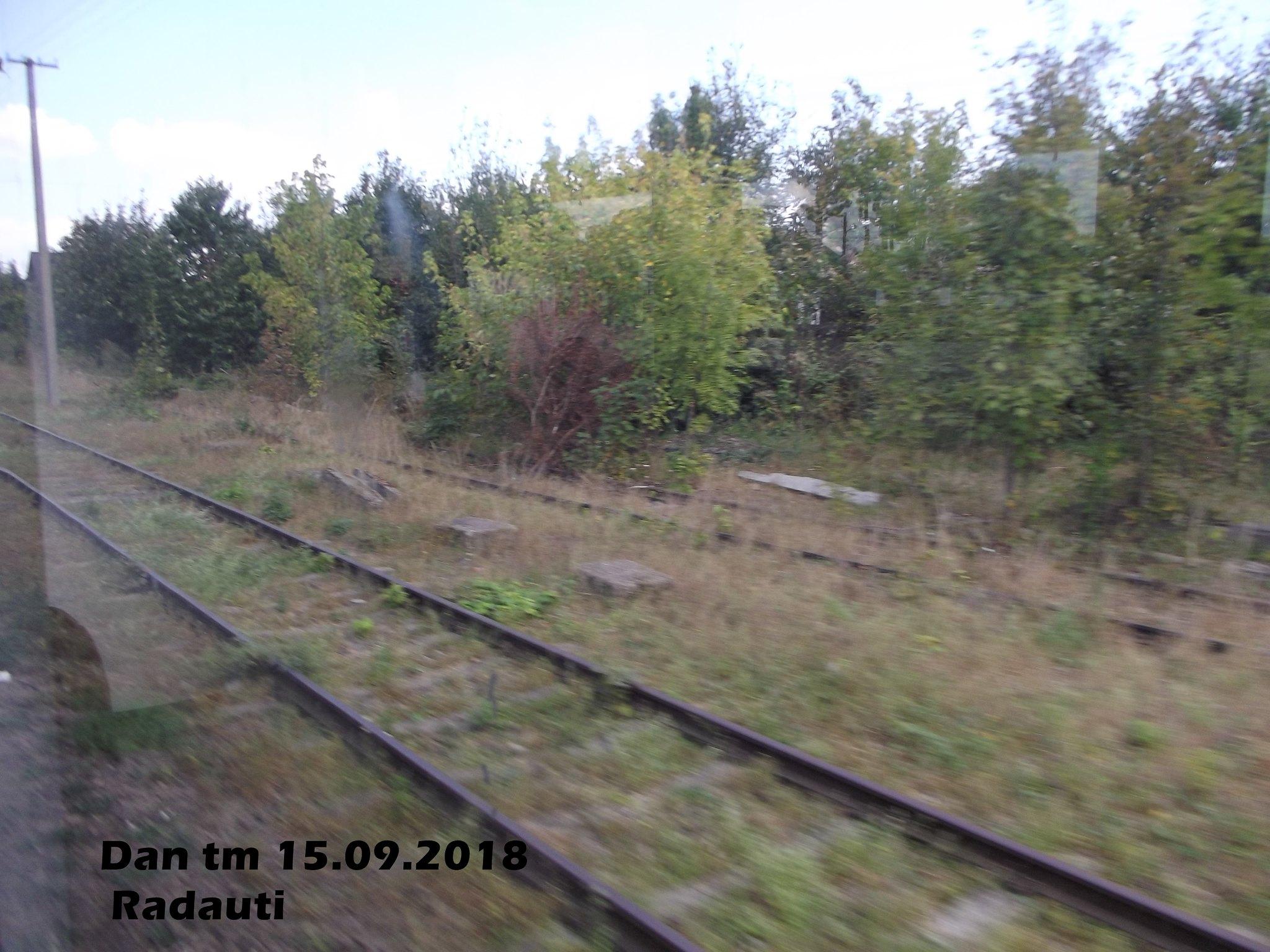 515 : Dorneşti - Gura Putnei - (Putna) - Nisipitu - Seletin UKR - Pagina 47 44734669161_4c627fccb1_k