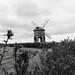20180818-23 _Chesterton Windmill - Warwickshire (b+w)