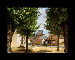 Dans la Sarthe.... - Photo of Pirmil